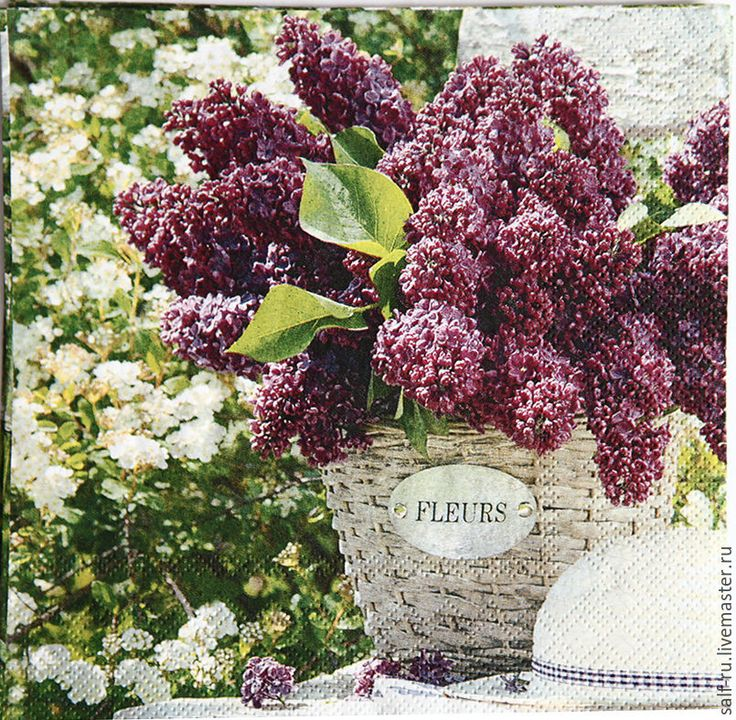 Купить Салфетка СИРЕНЬ - комбинированный, сирень, цветы, сад, кантри, букет сирени, салфетка декупажная