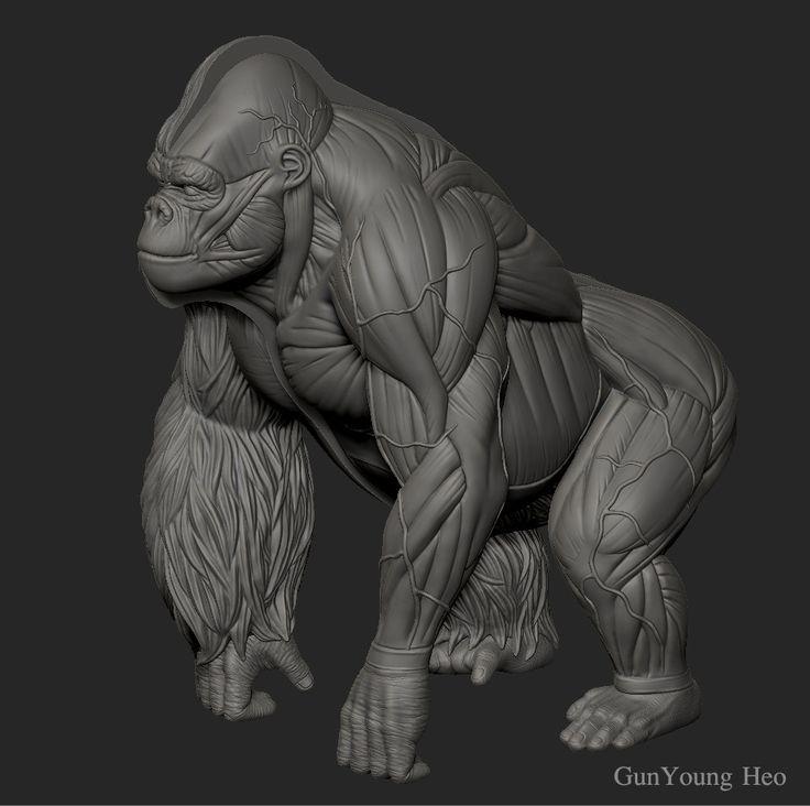 52 best Gorilla Design...