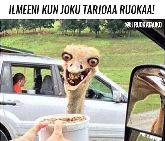 http://www.ruokatauko.fi