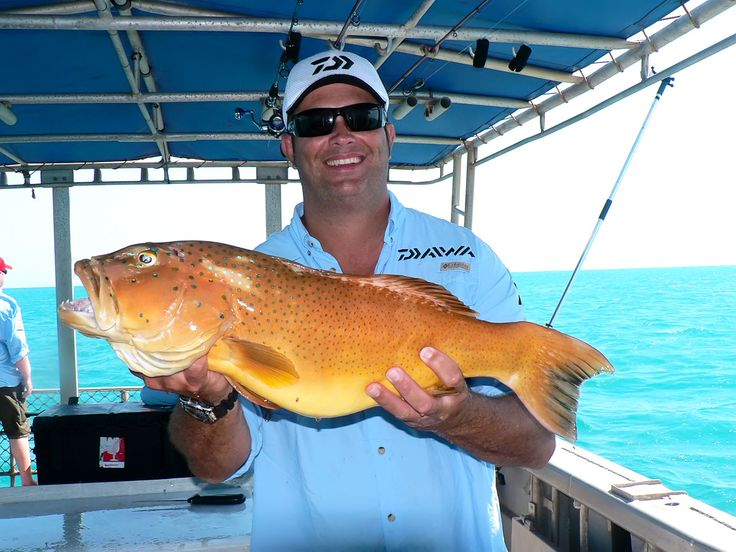 Mark Berg from Fishing Addiction, caught a big one with Gove Sports Fishing. www.govefish.com.au