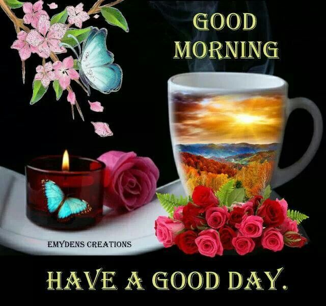 Good Morning Everyone Miss Caroline : Best images about have a nice day on pinterest