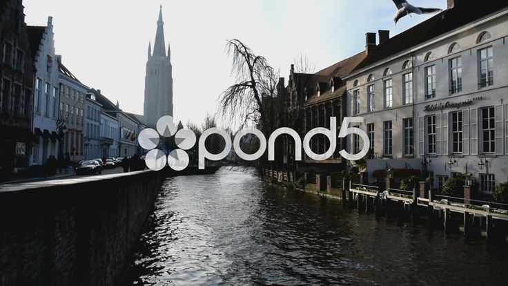 Seagulls flying over canal in Bruges, Belgium. Hazy sunshine tall church steeple - Stock Footage | by glenman77