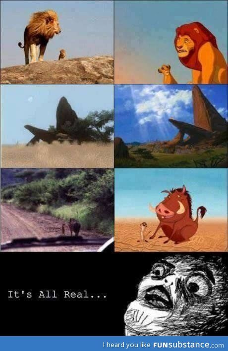 Lion King in real life ,its always been real people, come on, if u were as close to the lion king as me you would know you bunch of fools