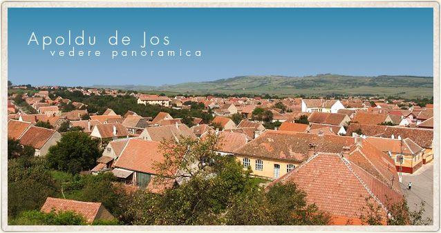 Primăria Apoldu de Jos