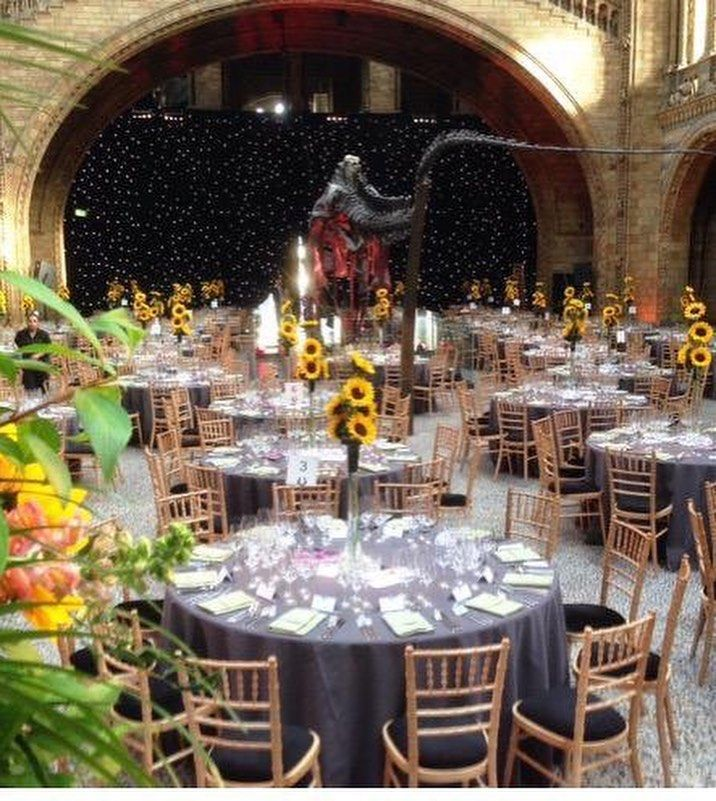 Our Tall Lilly vases filled with Sunflowers at an event held @NHM_VenueHire #eventprofs #Flowers