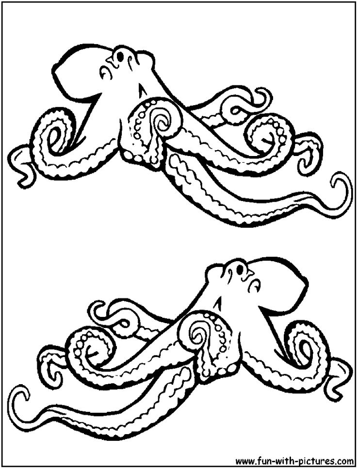 printable coloring pages octopus - photo #49