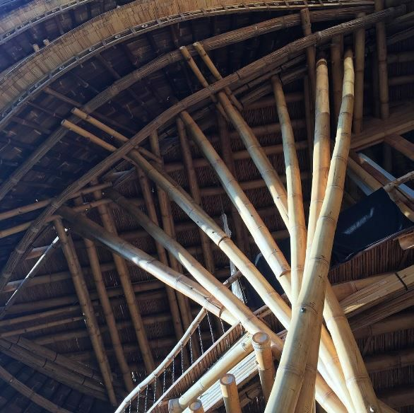Green Village - Bamboo ceiling details