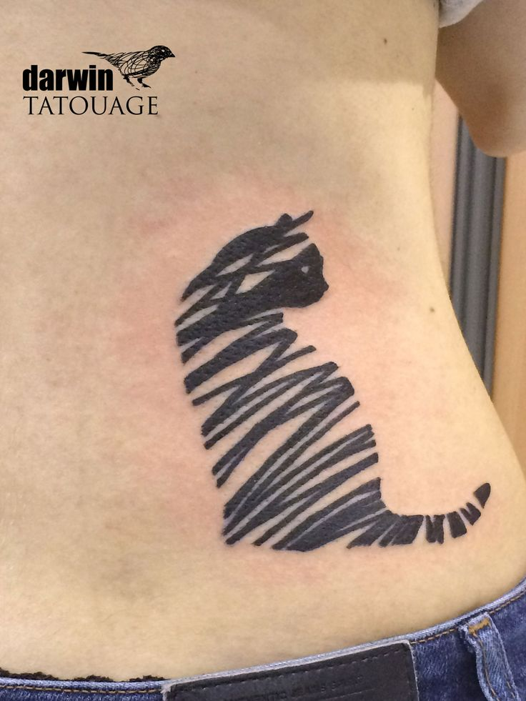 Darwin Tatouage Patterns