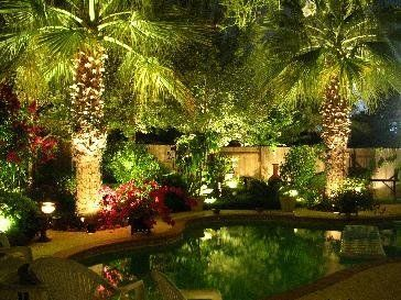 Best 25+ Tropical backyard ideas on Pinterest