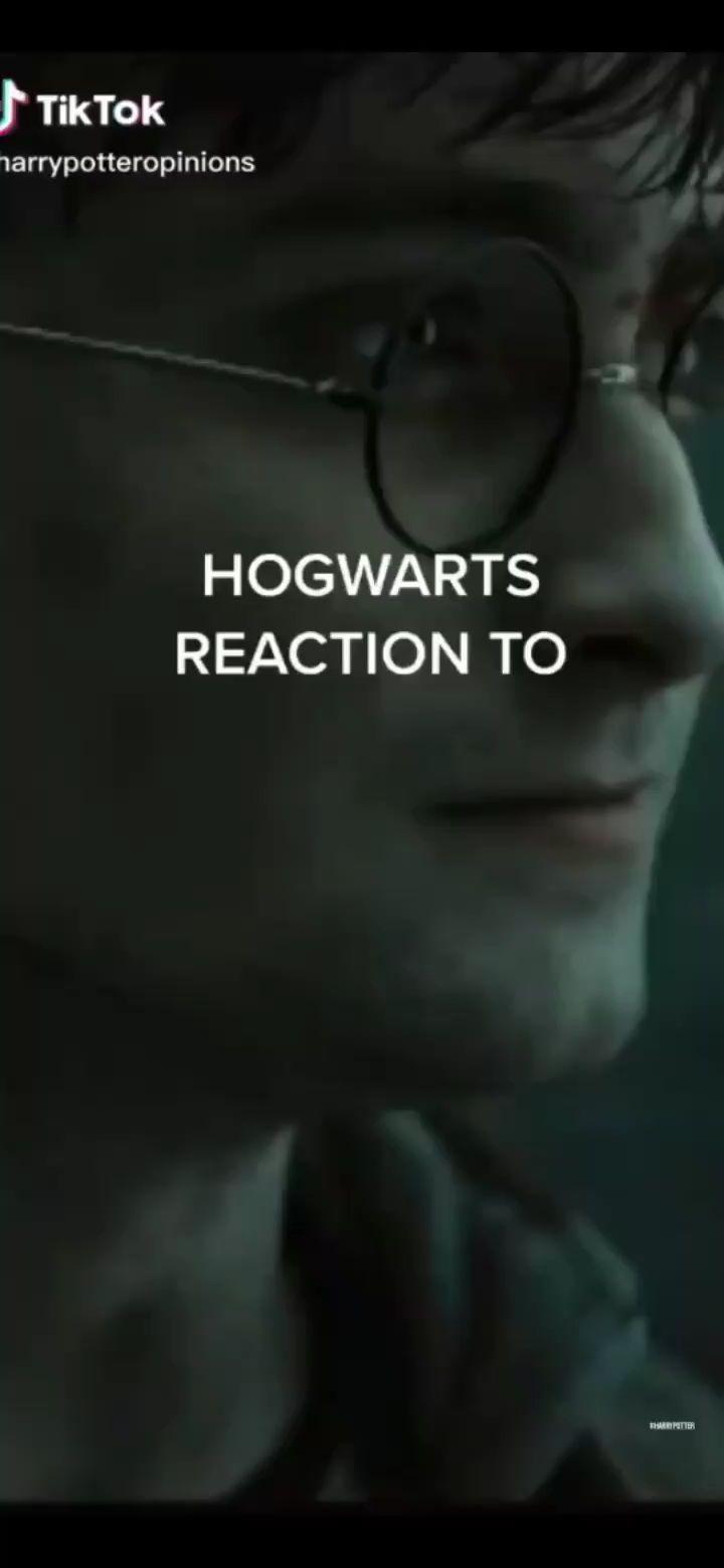 Wizardrypotters On Instagram Unlimited Harry Potter Merch Link In Bio Follow Wizardrypotters For More Tag A Potter Harry Potter Merch Potterhead Harry