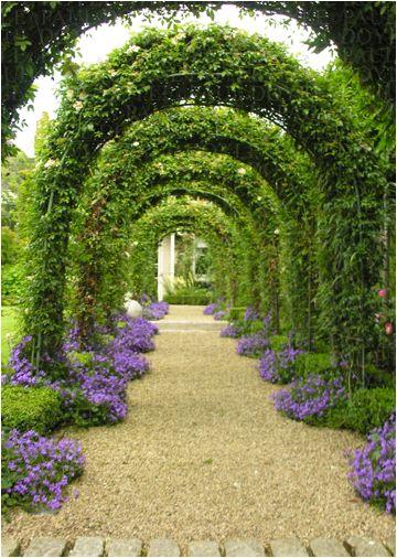 Sandford Garden - Paul Doyle design