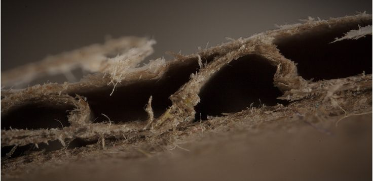 Extreme Close-Ups of Everyday Things « Corrugated Fiberboard