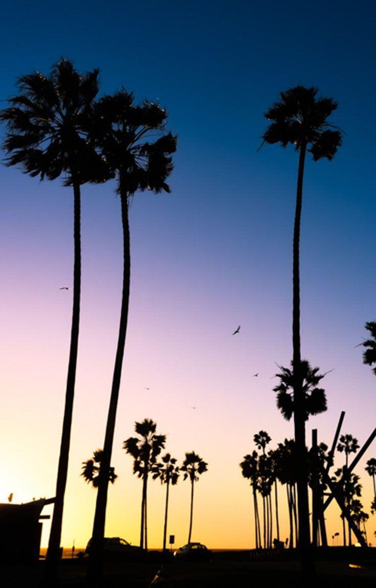 Venice Beach: beautiful colourful sunset lighting up the Atlantic.