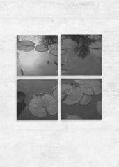 Full Moon - lily pond: Set of 4 Wood wall art - $385.00 USD