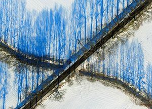 Sieversdorf, Germany Trees cast shadows on a snowy landscape