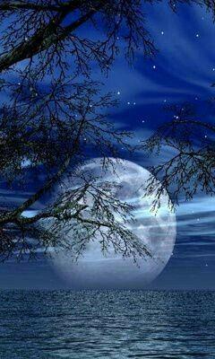Una luna llena resalta en una anocheser hermosa