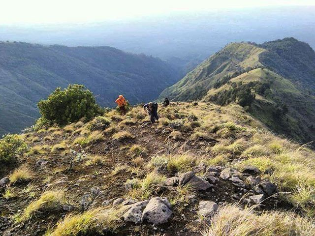 Mount rinjani trekking south trek.  Join us #mujitrekkertrip  Explore the white sand beaches and the beautiful mountains in the exotic Lombok Island.  #mujitrekker #lombokbeach #mountaintrekking #mtrinjani #mountrinjani #mountaineering #mountaingirls #lombokisland #traveling #travellust #wanderer #wanderlust #natgeotravel #natgeo #lombok #indonesia #adventure #amazing #tetebatu