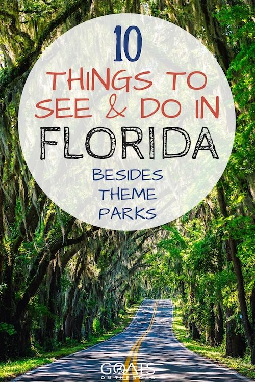Wandering what there is to do in Florida except theme parks? Look no further, from nature to beaches, here's your ultimate Florida bucket list including lots of fun adventures perfect for spring break | #florida #usa #bestofusa #springbreak #bestintravel #travelusa