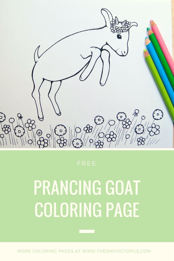 32 best Printables images on Pinterest | Free printable, Colouring ...
