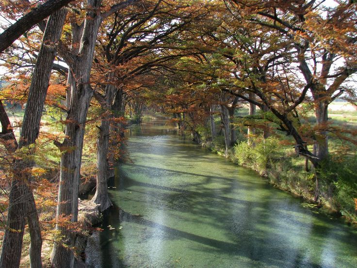 Medina River ~ Located in the Medina Valley of south central Texas, the Medina River winds about 116 miles through limestone bluffs before merging with the San Antonio River just southeast of San Antonio. This beautiful river is lined with bald cypress trees, live oaks, and rugged cedar.
