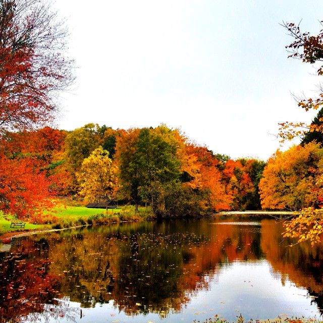 Fall foliage and lake reflection: Photo was taken around ...