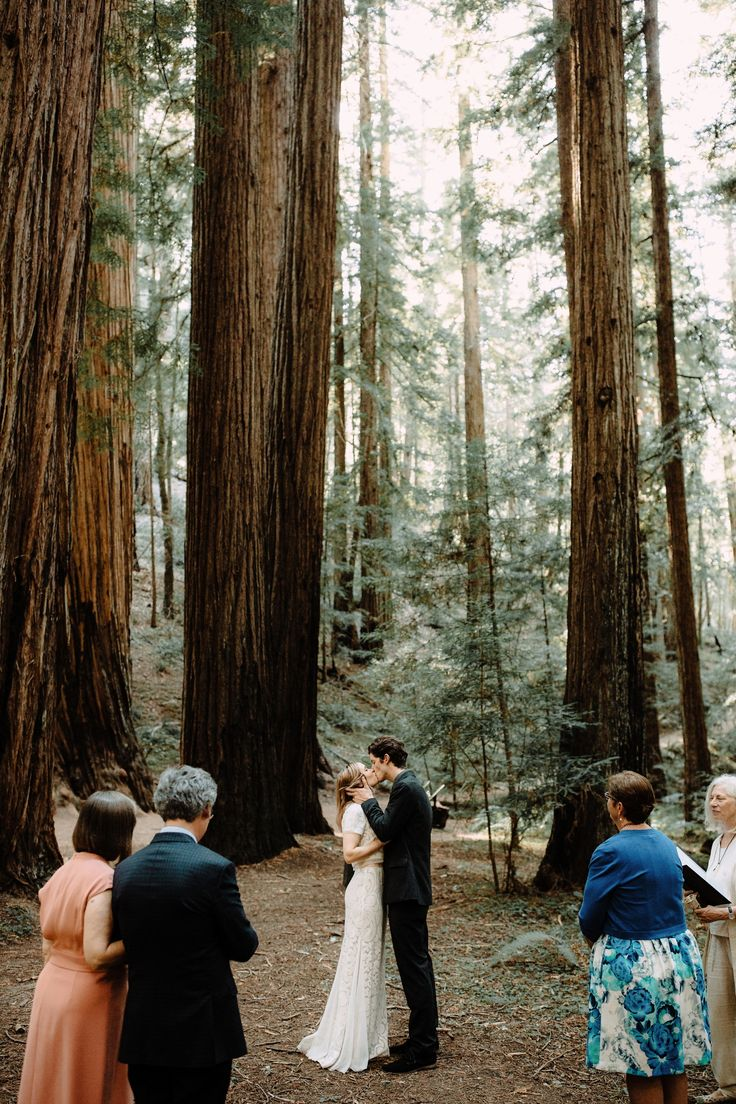 small intimate weddings southern california%0A Best     Redwood forest wedding ideas on Pinterest   Redwood wedding   Enchanted wedding venues and Forest wedding venue