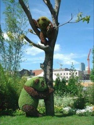 2 PANDAS IN A TREE!! http://weathertightroofinginc.com