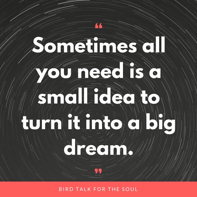 Having a dream or an idea is only the beginning.