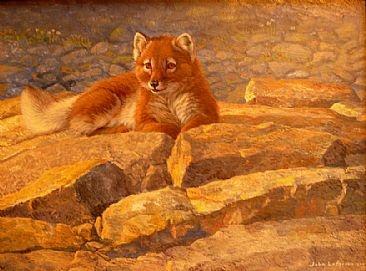 Images About Fox Art Pinterest Minnesota