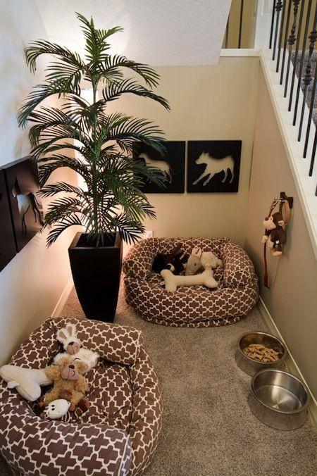 10 rincones espectaculares en casa para tu perro
