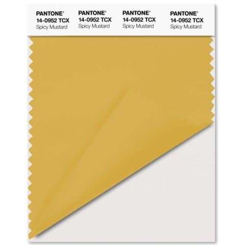 """While Spicy Mustard may sound like a standard ballpark condiment, according to Pantone, it's actually an """"exotic,"""" """"zesty,"""" """"uplifting"""" shade that's perfect for fall. (Plus, it looks a lot like one of our favorite colors: Marigold.)"""