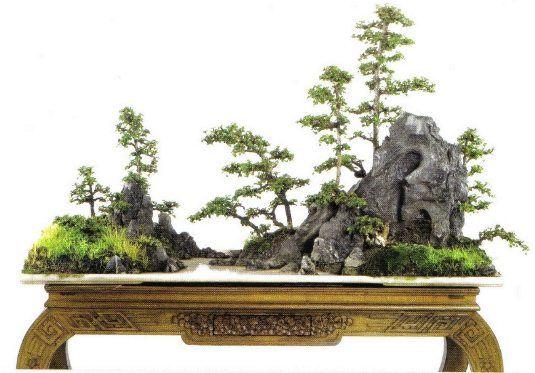 http://www.yamadori-bonsai-hungary.hu/foto/saikei06.jpg