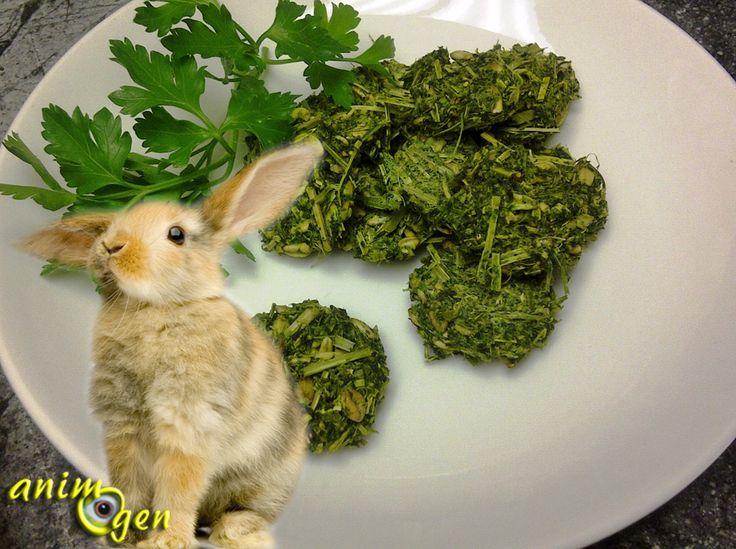 les 14 meilleures images du tableau alimentation du lapin sur pinterest le lapin rongeurs et. Black Bedroom Furniture Sets. Home Design Ideas