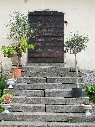 Stairs and door