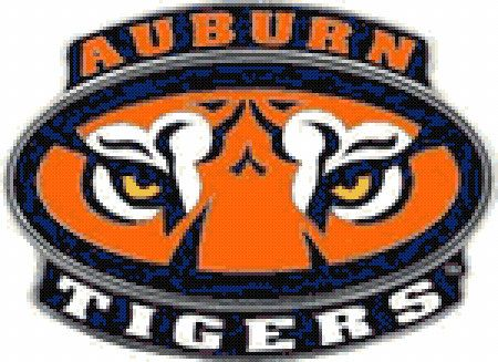 11 best auburn images on pinterest cross stitches crossstitch and auburn college football cross stitch pattern by custompatterns 495 fandeluxe Gallery