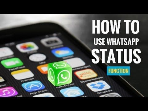 How to Use WhatsApp Status Function | My Instant Messaging