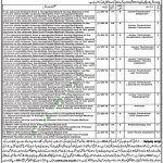 Punjab Educators Jobs September 2017 NTS Application Form Online Registration Form