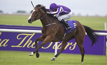Minding made light of winning the Pretty Polly Stakes at The Curragh for Aidan O'Brian and Ryan Moore. Minding is now 8-1 with Haazand for the Arc. 26.06.2016