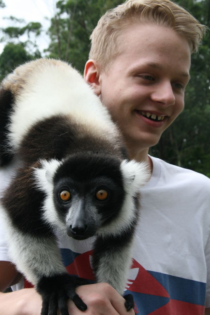 Leo and Lemur