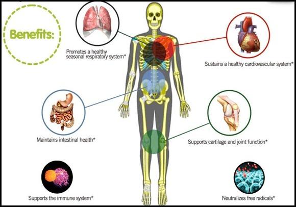 Mangosteen health benefits | Holistic health | Pinterest