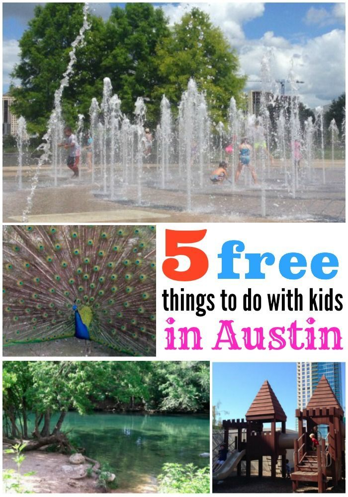 Road Trip 5 Free Things to do with Kids in Austin San