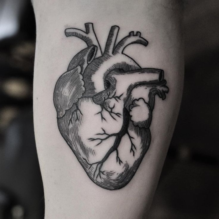 Another beautifully crated blackwork tattoo by Chris Jones. This anatomical…