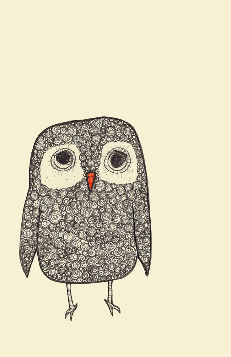 cute owl drawings - 736×1137