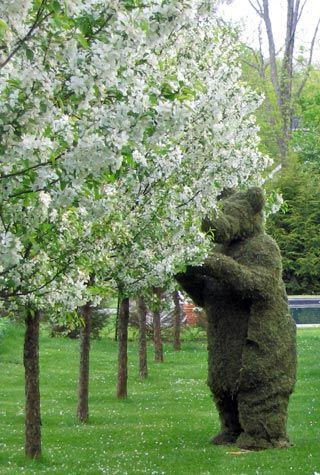 If you go down in the woods today you're sure of a big surprise. If you go down in the woods today you'd better go in disguise. For every bear that ever there was will gather there for certain, because today's the day the Teddy Bears have their picnic. http://www.elyrics.net/read/h/henry-hall-lyrics/the-teddy-bears_-picnic-lyrics.html
