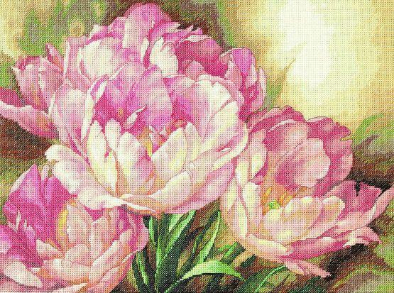 Tulip Trio Cross Stitch Kit £44.00 | Past Impressions | Dimensions