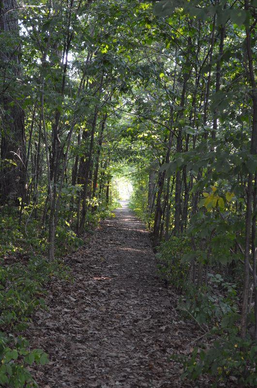 Exploring historic Wolfe Island, Ontario  Pinned by TurnipseedTravel.com