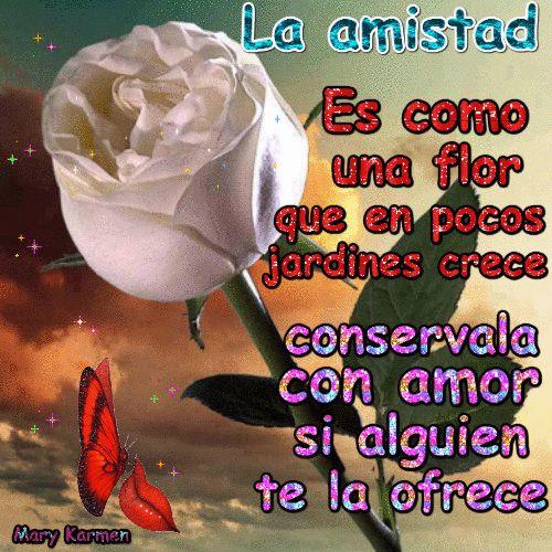 La amistad es como una flor   que en pocos jardines crece   conservala con amor   si alguien te la ofrece