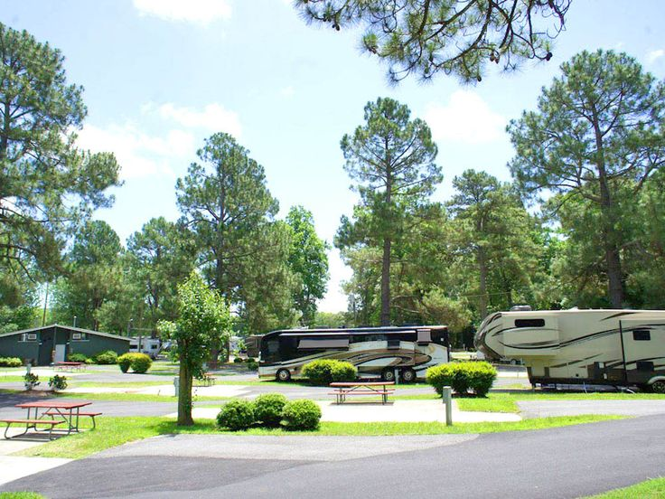144 best camping sights images on pinterest national for Fishing in williamsburg va