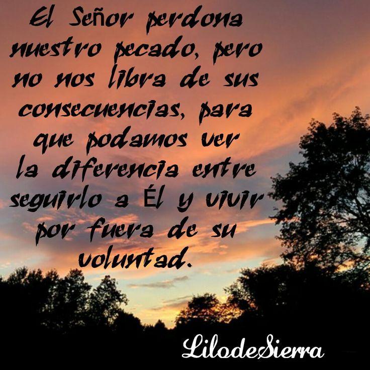#Verdad Toda acción tiene una consecuencia; el perdón y la disciplina del Señor van de la mano @LilodeSierra