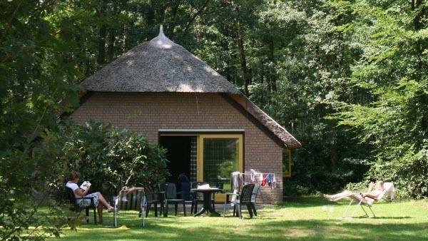 6-persoons bungalow Veluwe  Description: Ligging van Molecaten Park De Leemkule Dit sfeervolle familiepark met rietgedekte huizen ligt in Hattem in de noordoostelijke punt van de Veluwe vlakbij de Hanzestad Zwolle (5km). Het park ligt midden in de bossen en kenmerkt zich door een ruime opzet. Faciliteiten van Molecaten Park De Leemkule Het park beschikt over een buiten- en binnenzwembad met Turks bad sauna en solarium. Sportievelingen kiezen voor de tennisbanen (buiten). Ook heeft u de…
